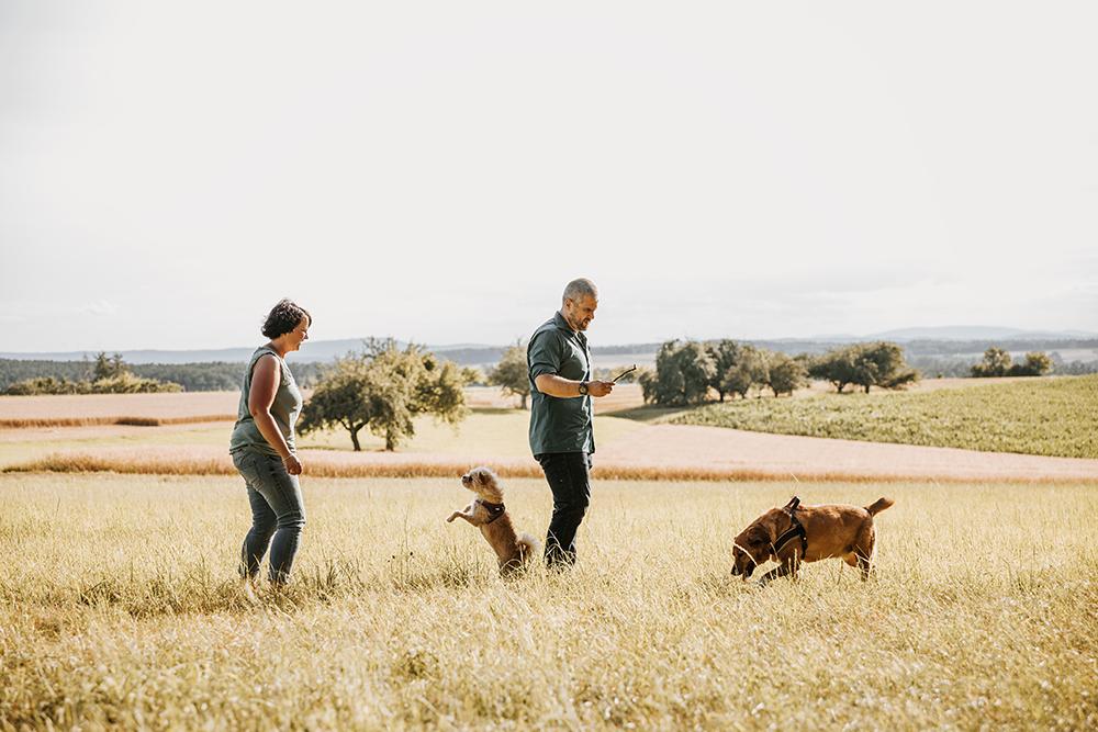 Paarshooting Hunde Familie Fotoshooting Bildgefühle Odenwald